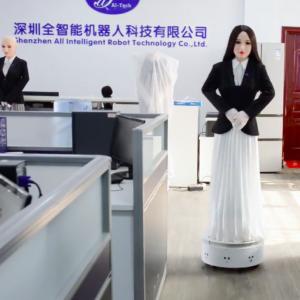 Emma Assistance Robot
